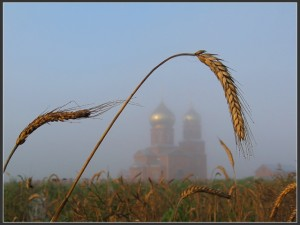 sxiigumen-ioann-valaamskij-starec-kak-ustroit-duxovnuyu-zhizn